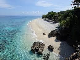 セブ島海と砂浜